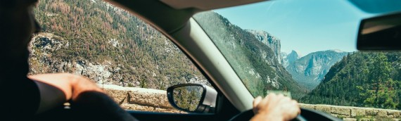 Longest Lasting Car Air Freshener >> Essential Oils The Best And Long Lasting Car Air Freshener